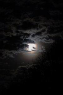 moonshot05_5548285187_o
