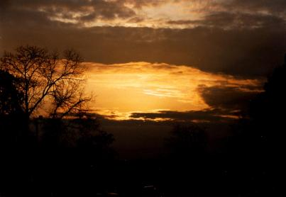 yellow-sky_5156307385_o
